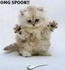 OMG! A SPOON!!!
