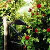 a Visit to the Secret Garden