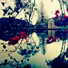 a Romantic Trip to the Lake