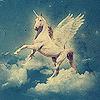 A Magical Flight