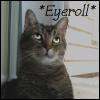 *eyeroll*