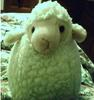Cute Sheepy Loves You!