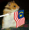 malaysian hamster
