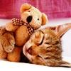 Sweet hugs ♥