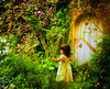 little secret garden
