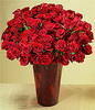 100 roses Specially for U