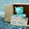 will cuddle for food