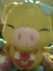 say OINK~