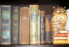 Choose a book from my bookshelf